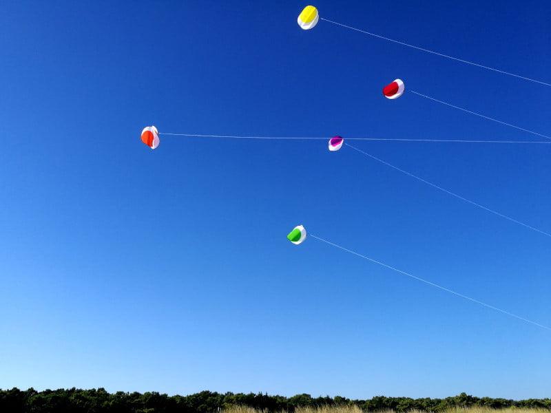 Cour d'Éole propose des ateliers de pilotage de cerfs-volants monofils avec des Switch